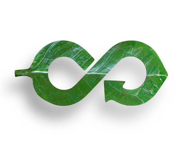 Leaf in form of arrow infinity recycling shape, circular economy stock photo