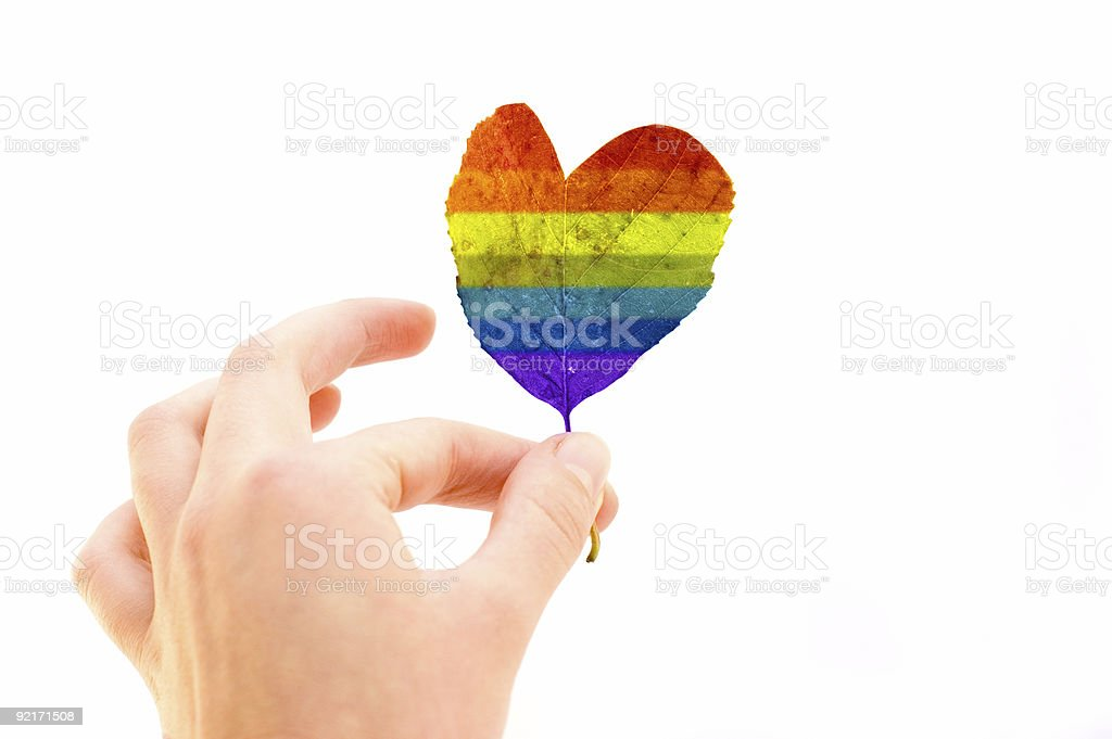Leaf of Love royalty-free stock photo