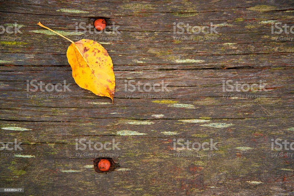 Leaf on Wood Plank stock photo