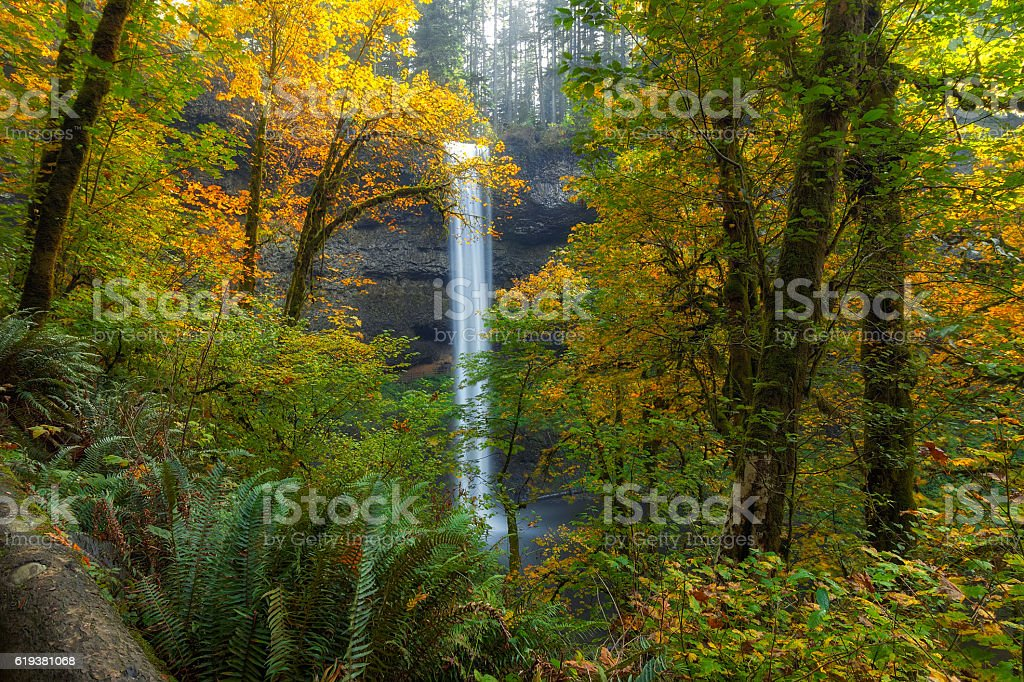 Leaf Peeping and Waterfall stock photo