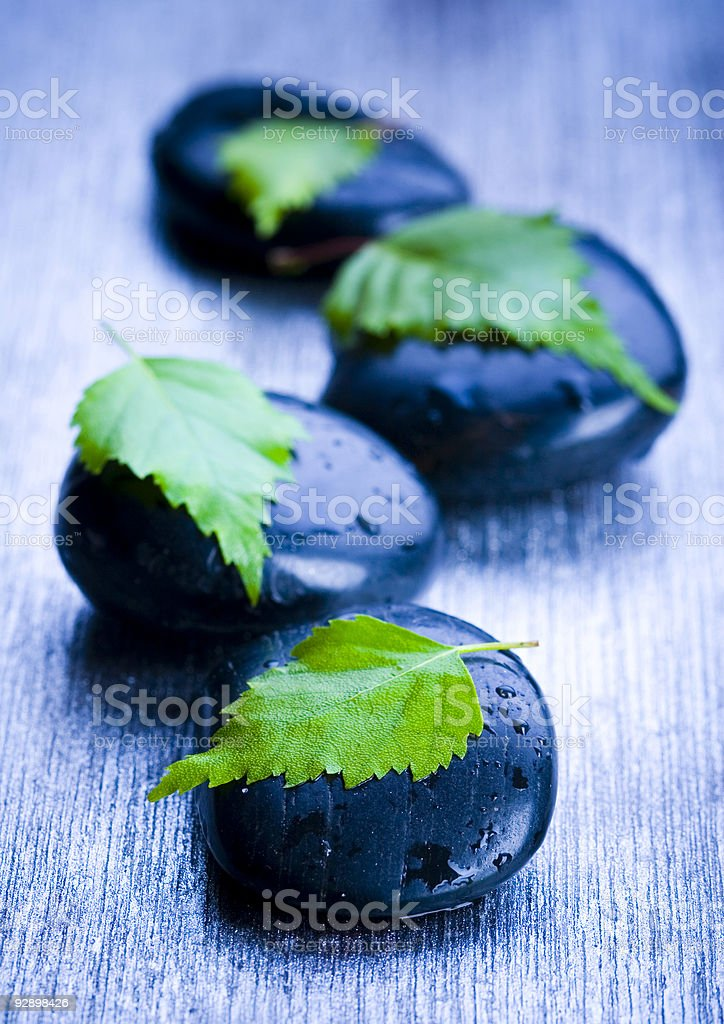 Leaf & Stones royalty-free stock photo