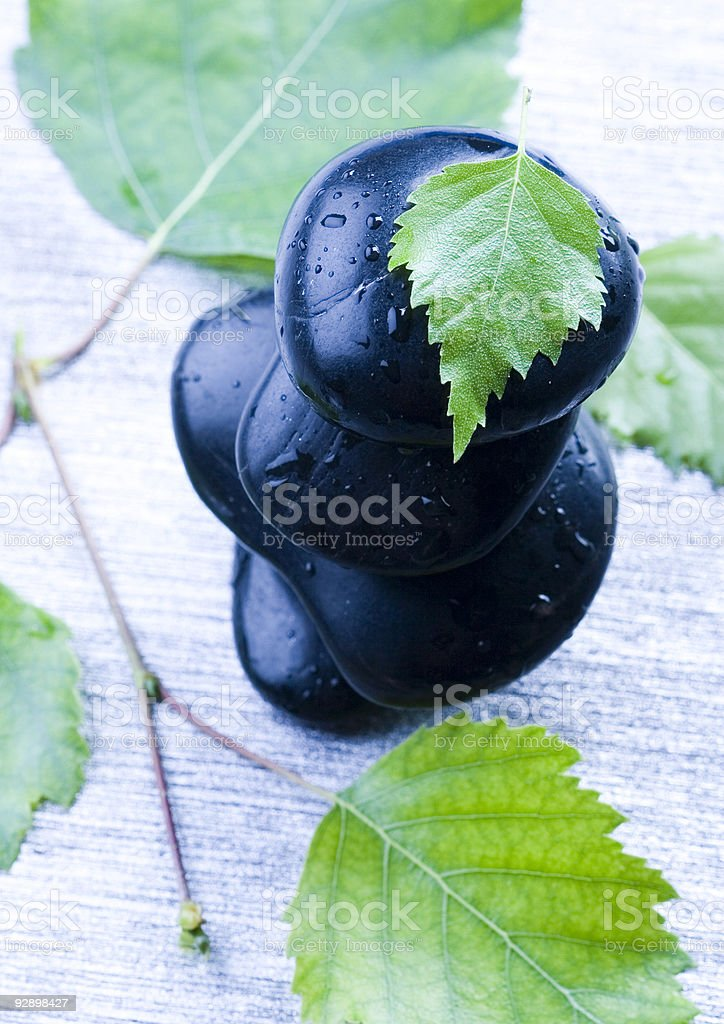 Leaf & Stones royalty-free stock photo