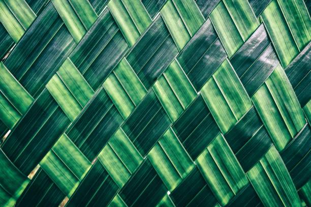 Leaf texture background stock photo