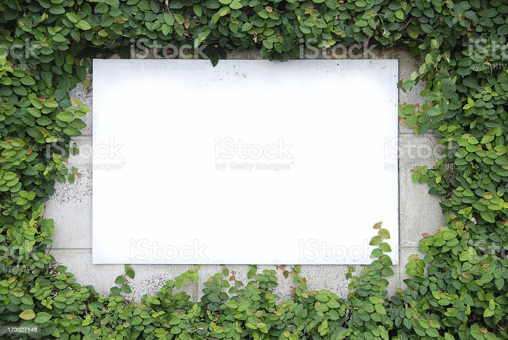 Leaf wall with blank sign ready to use for any message it\'s look like...