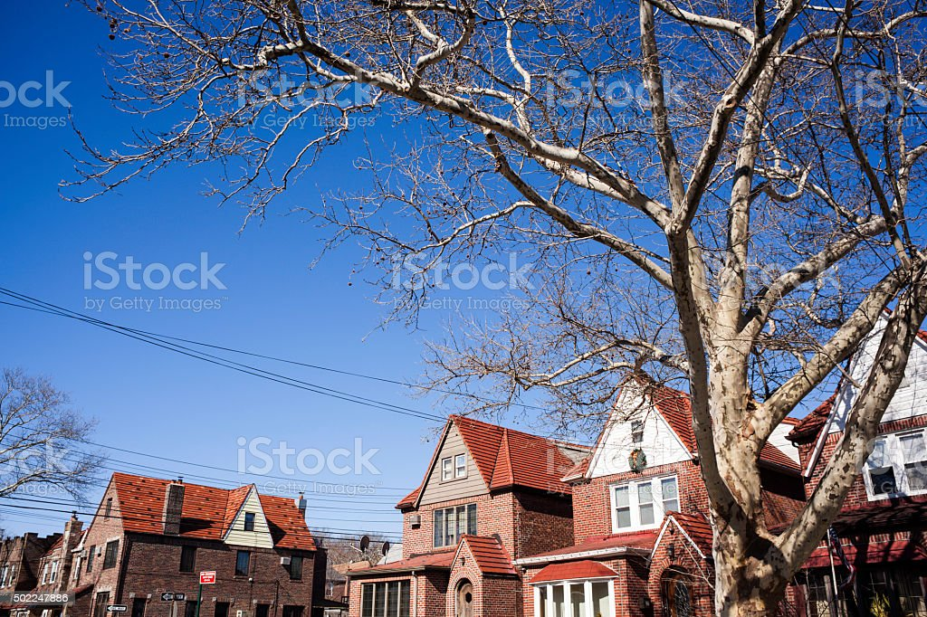 Leafless Oak Tree. Two-story Homes. Real Estate. Spanish style. stock photo