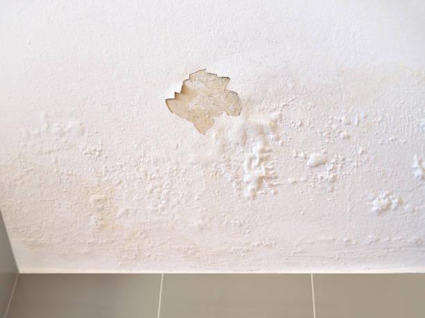 Leakage of roof water picture id987433278?b=1&k=6&m=987433278&s=612x612&w=0&h=7fgkb3cvruembkcbpxid8pz2pxwxnon6br pyr0hlms=
