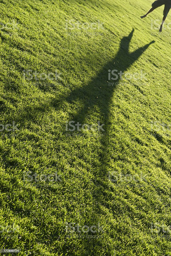 Leaping Shadow Green Grass royalty-free stock photo