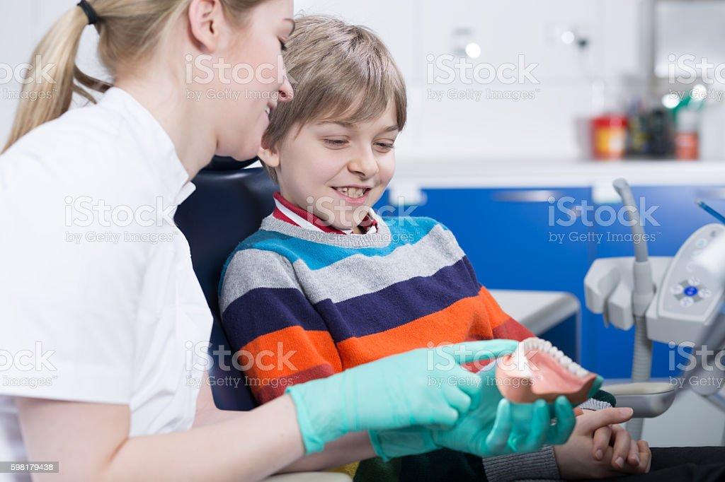 Learning by jowl dentist's model foto royalty-free
