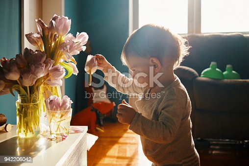 953553492 istock photo learning ecology from a young age 942206042