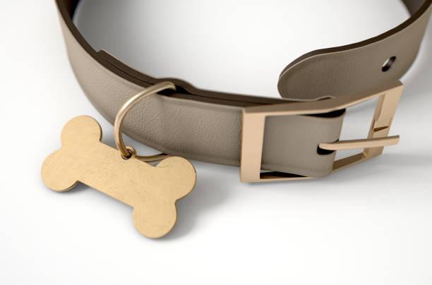lederhalsband mit tag - halsband stock-fotos und bilder