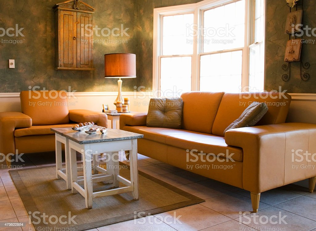 Leather Furniture stock photo