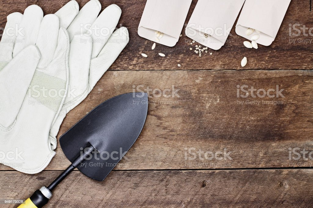 Leather Gloves Spade and Vegetable Seeds stock photo