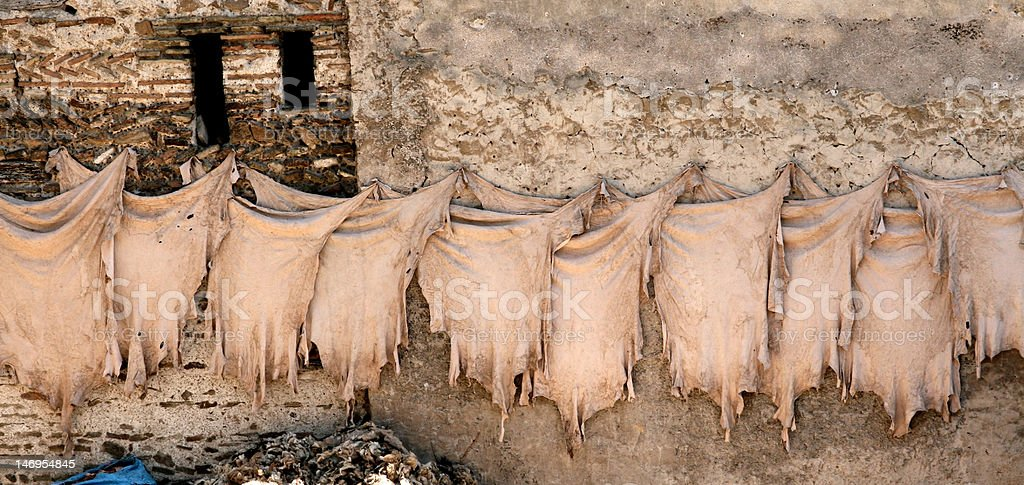Leather hanging at tannery royalty-free stock photo