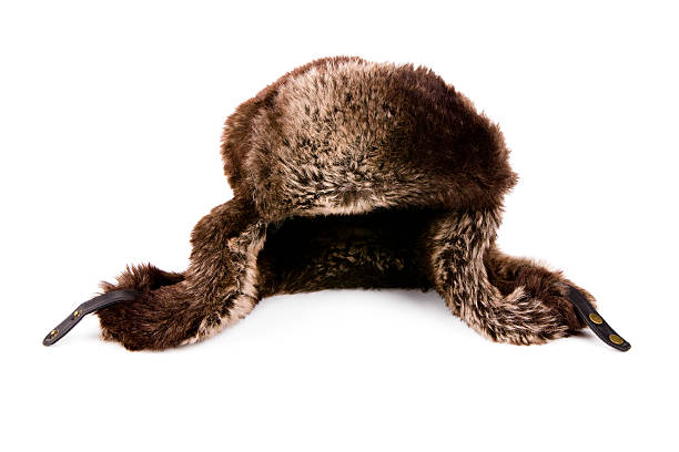 Leather Hat with Fur XXXL stock photo