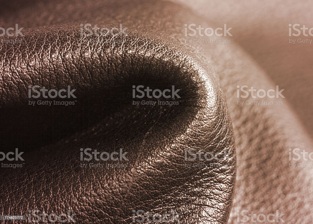 Leather Jacket royalty-free stock photo