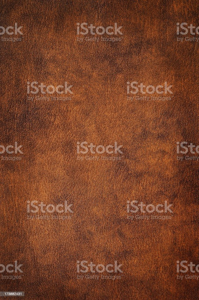 Leather stock photo