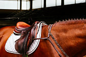 Leather saddle with the reins on a brown horse