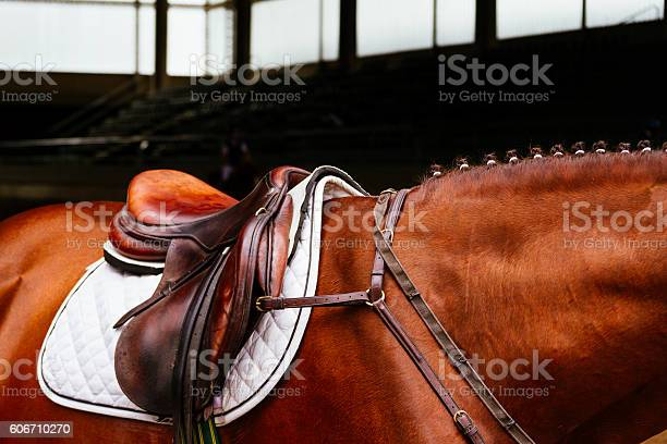 Photo of Leather saddle with the reins on a brown horse