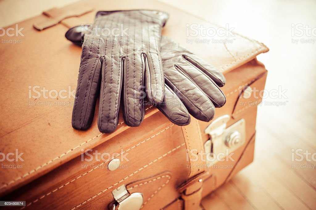 Leather suitcase and gloves stock photo