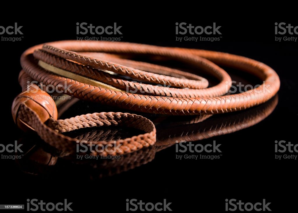 Leather Whip stock photo