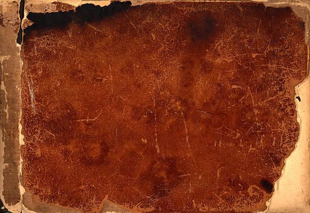 leathery background stock photo