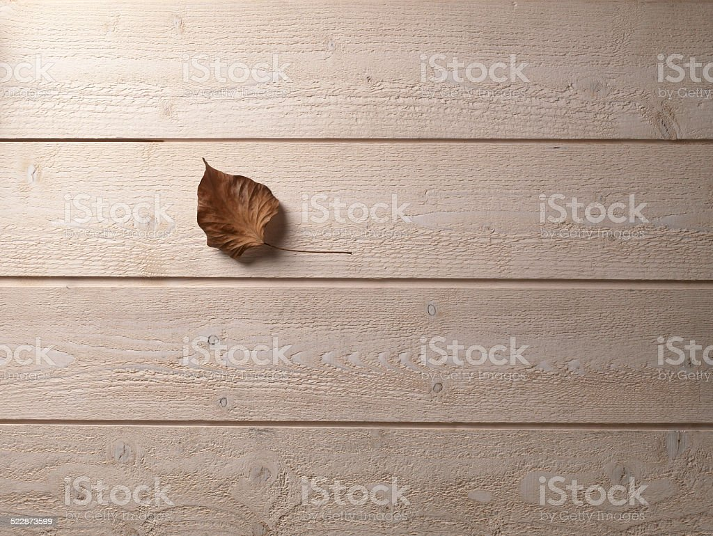 Leave on a wooden floor stock photo