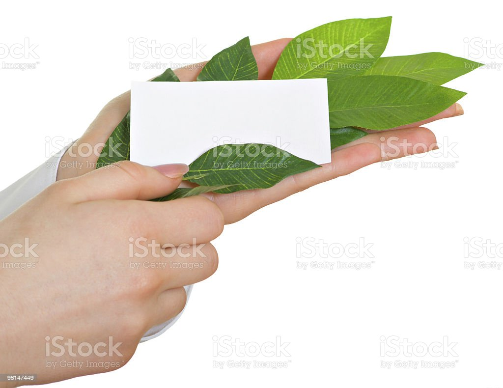 leaves and a business card royalty-free stock photo