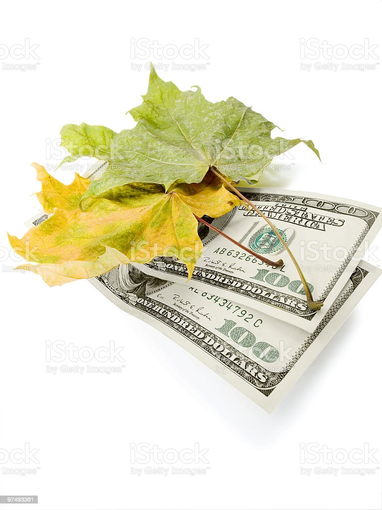 Leaves and dollars royalty-free stock photo