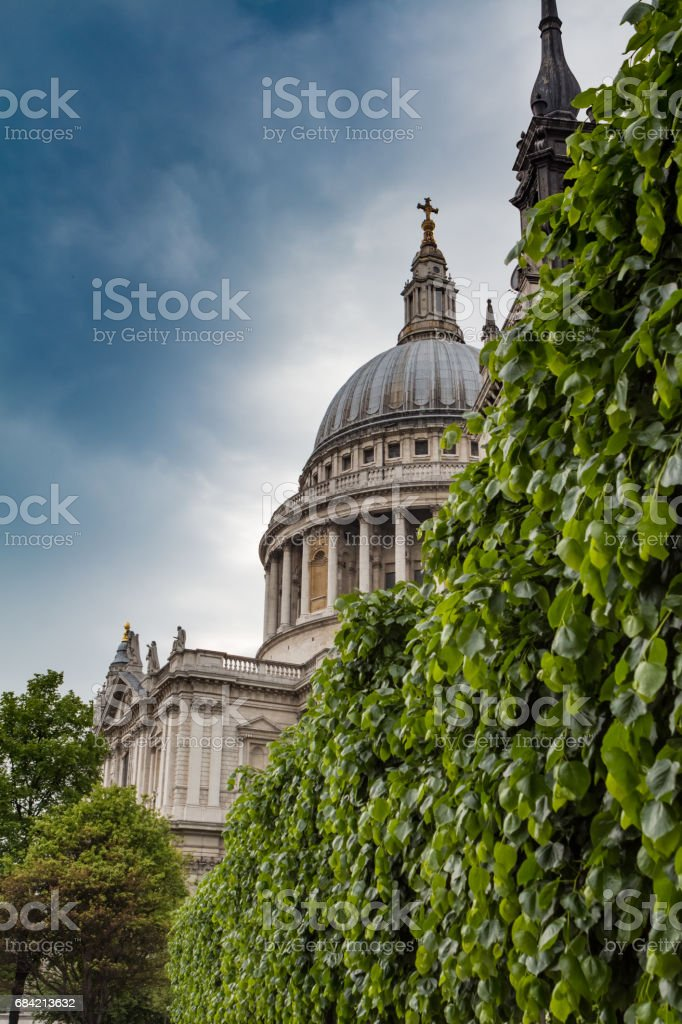 Leaves and St Pauls cathedral royalty-free stock photo