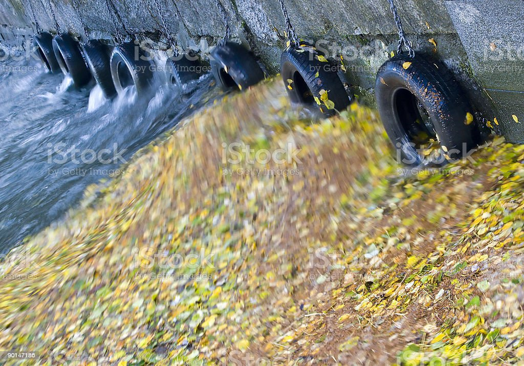 Leaves and tyre fenders. stock photo