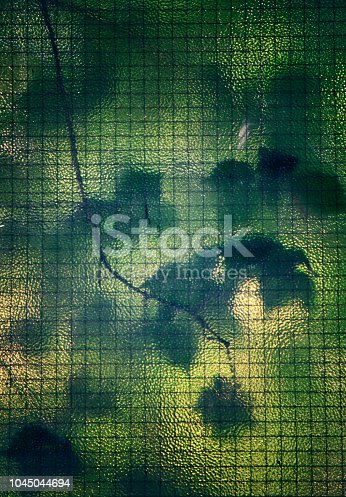 istock Leaves behind stained glass. 1045044694