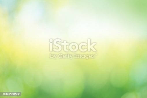 639809128 istock photo Leaves bokeh for nature background 1060588568