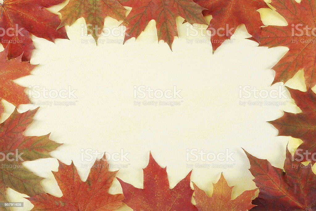 leaves border on textured paper royalty-free stock photo