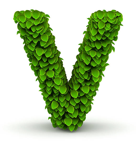 Leaves font letter V stock photo