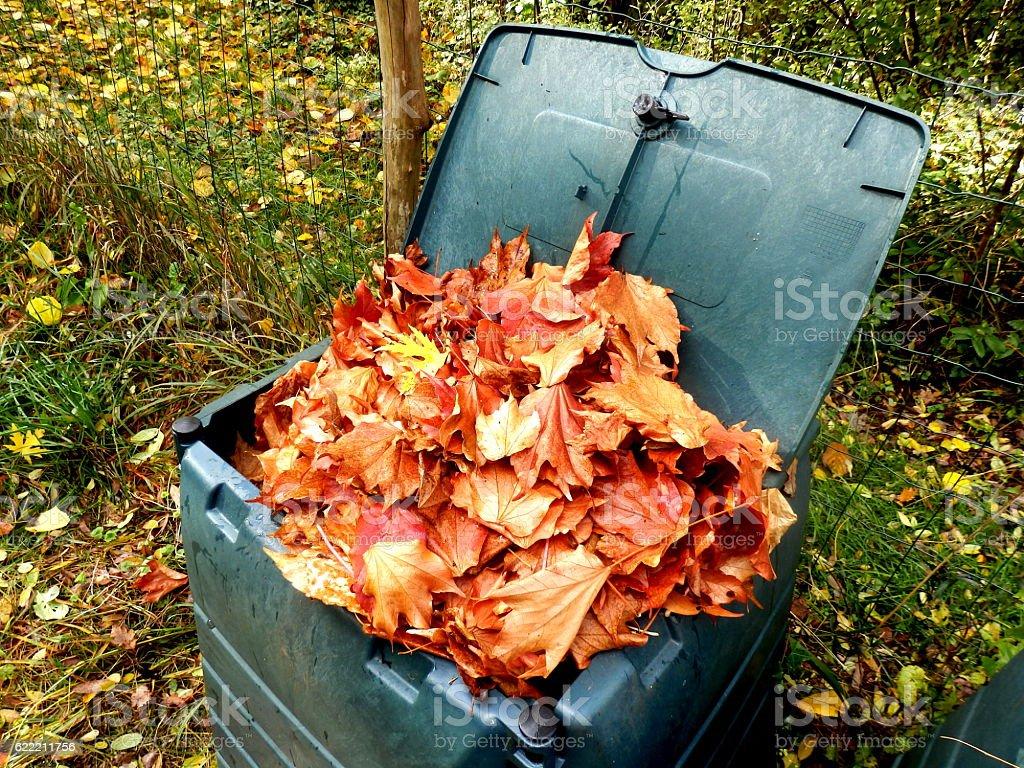 Leaves in compost bin stock photo