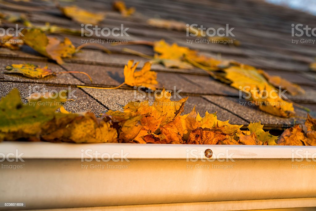 Leaves in gutter and roof of a house stock photo