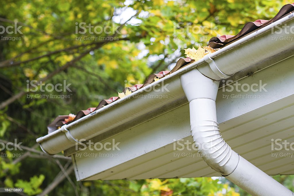 Leaves in gutter stock photo