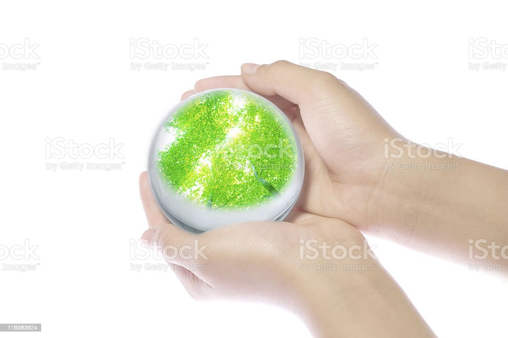 Leaves In Hands royalty-free stock photo