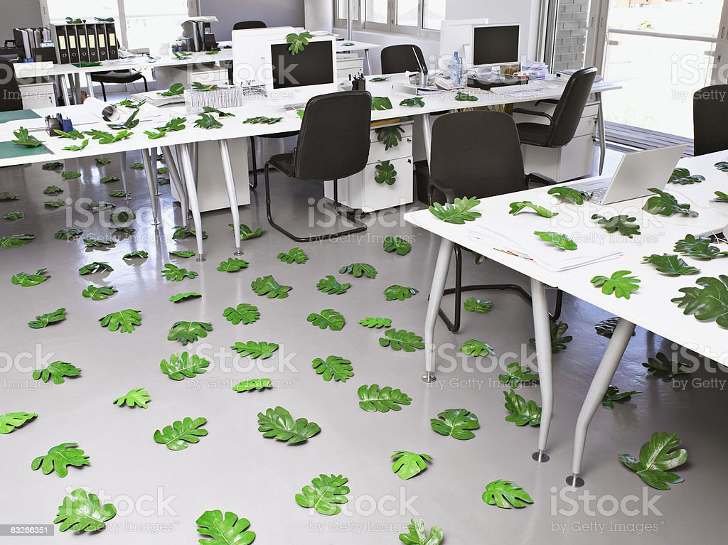 Leaves lying around modern office royaltyfri bildbanksbilder