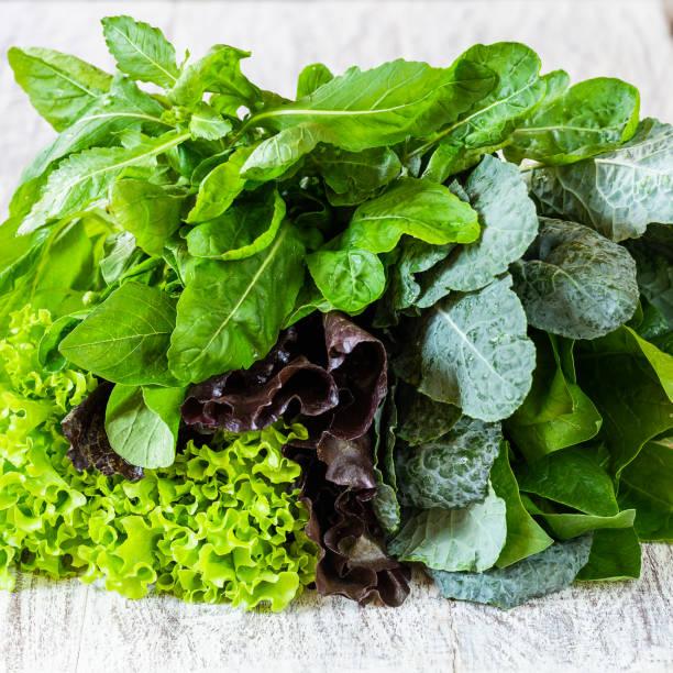 녹색과 붉은 상 추, rucola, 양배추의 일종, 아마 란 스, 화이트 테이블 클로즈업에 시금치의 잎 - 아루굴라 뉴스 사진 이미지