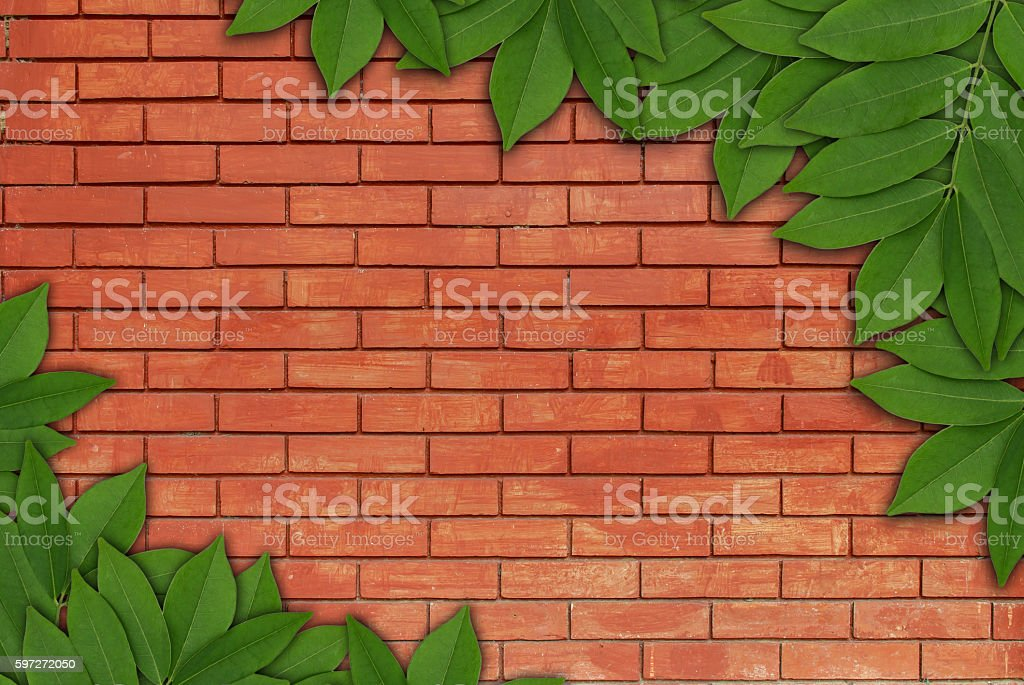 Leaves on brick background, Leaves frame royalty-free stock photo