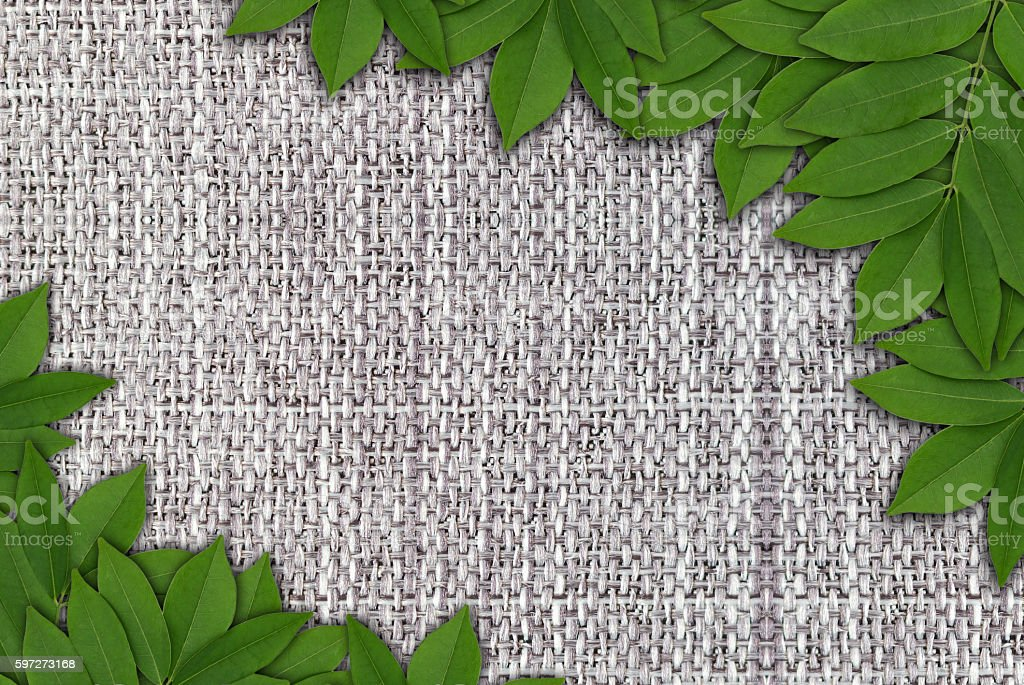 Leaves on hemp background, Leaves frame photo libre de droits