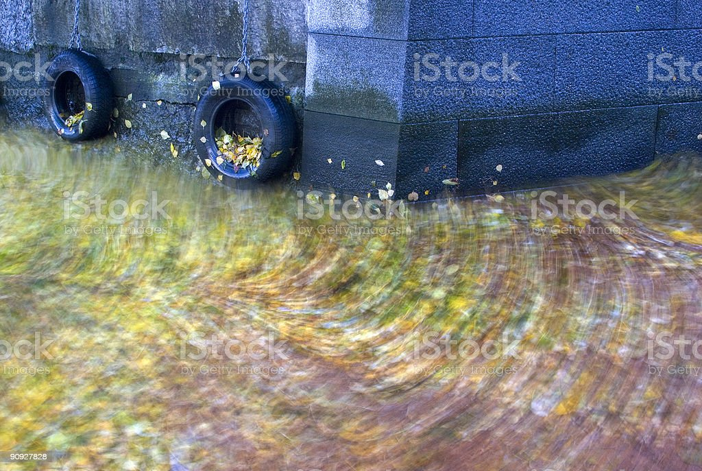 Leaves on the sea. stock photo