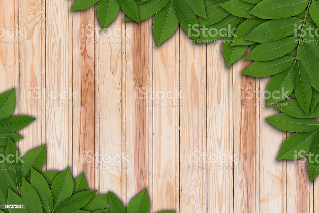 Leaves on wood background, Leaves frame royalty-free stock photo