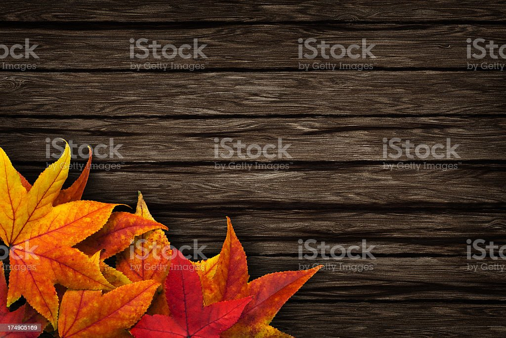 Leaves on wooden background royalty-free stock photo