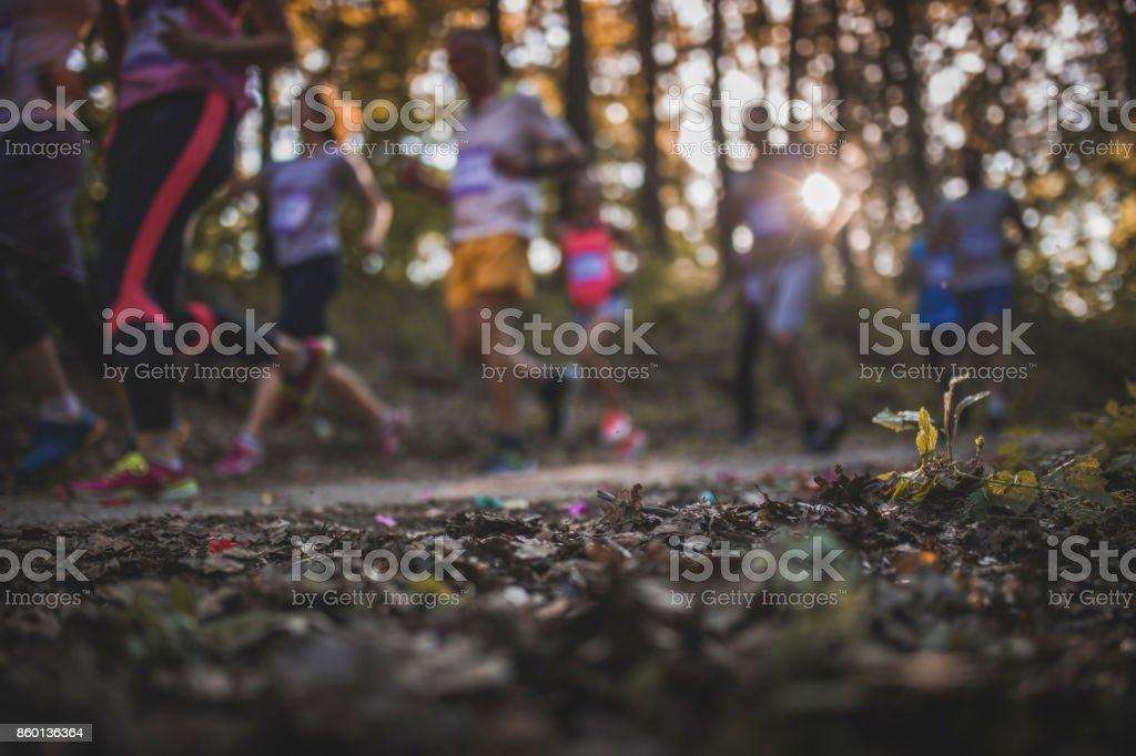 Leaves with marathon runners in the background. stock photo