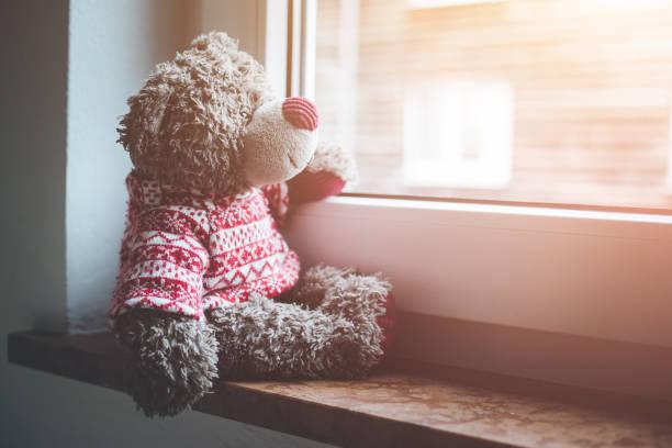 leaving concept: teddy bear is looking out of the window - teddy bear imagens e fotografias de stock