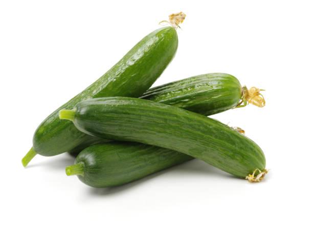Lebanese Cucumber – zdjęcie