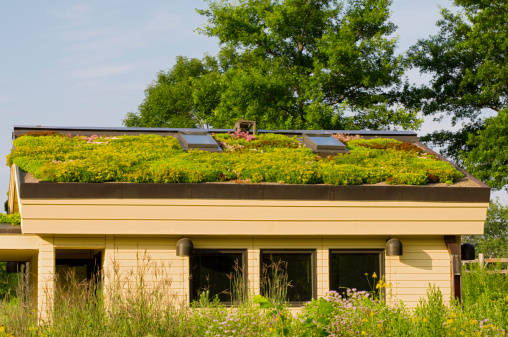 Lebanon Hills Green Roof And Gardens Stock Photo - Download Image Now