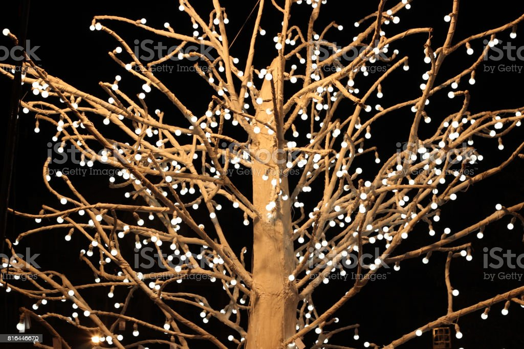led light tree stock photo